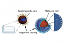 Neutrons Aid the Development of Cancer-Killing Nanoparticles