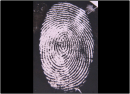 New fluorescent fingerprint tag aims to increase IDs from 'hidden' fingerprints on bullets and knives