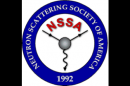 Call for Nominations for the NSSA Prizes and Fellows