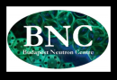 Budapest Neutron Centre-call for proposals, deadline 15 May